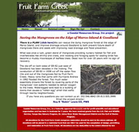 Fruit Farm Creek - Mangrove Restoration - Marco Island FL