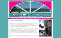 See Thru Window Cleaning - Marco Island Florida - Professional Window Cleaning